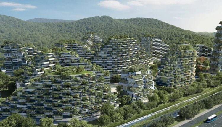 Her Yerinde Ağaç Olan Bir Kent ve Nefes Alan Binalar