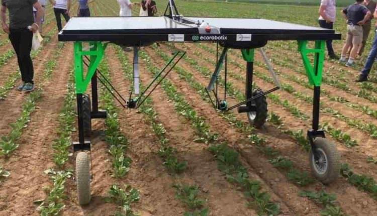 Herbisit Kullanımını Azaltan Akıllı Robot