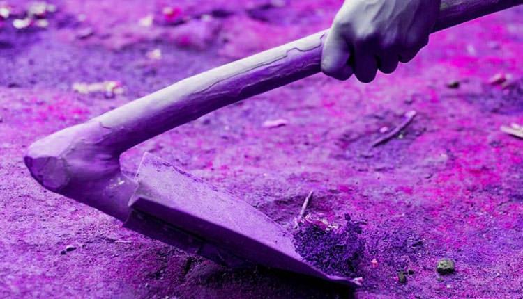 Bu yöntem tohumların tuzlu topraklarda yetişmesine yardımcı oluyor