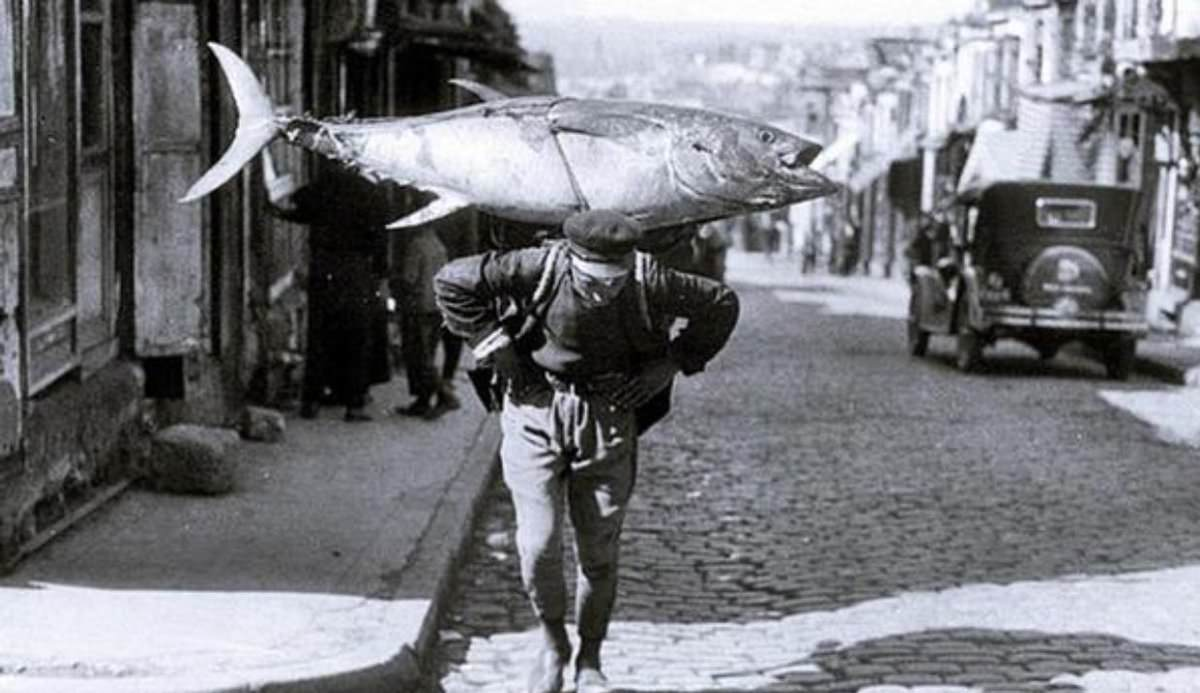 Marmara ve Karadeniz'in popüler balık türleri yok oluyor