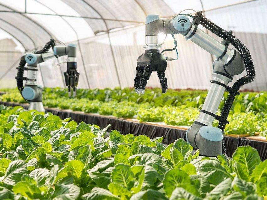 2021 ve sonrası için çığır açan 8 tarım teknolojisi